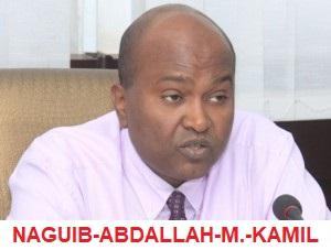 Djibouti : pourquoi un garde du corps pour le secrétaire général de la primature de Djibouti?