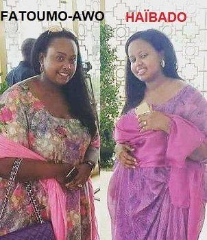 Djibouti : Haïbado Ismaël Omar Guelleh a détourné 4 à 6 millions de dollars US de la Caisse Nationale de Sécurité sociale (CNSS).