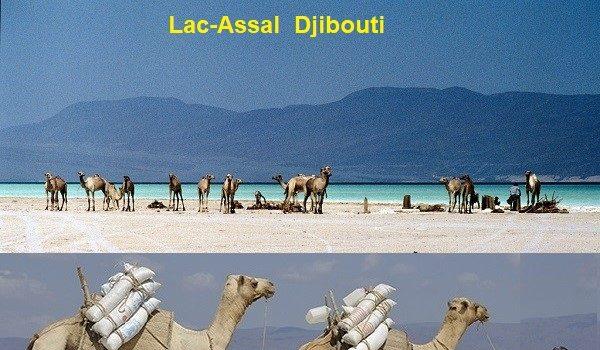 Djibouti : Affrontement à Lac-Assal entre des Chinois et la population djiboutienne de cette localité.