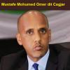 Éthiopie/région Somali : y a-t-il eu un coup de force raté dans la région somalie de l'Éthiopie?
