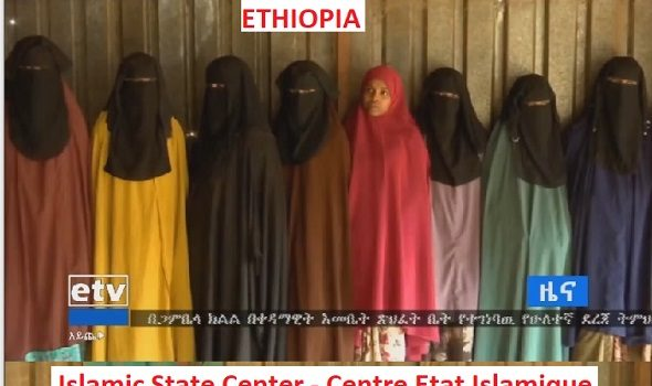 Éthiopie : Centre État Islamique, le nouveau groupe islamiste extrémiste armé qui voit le jour en Éthiopie.